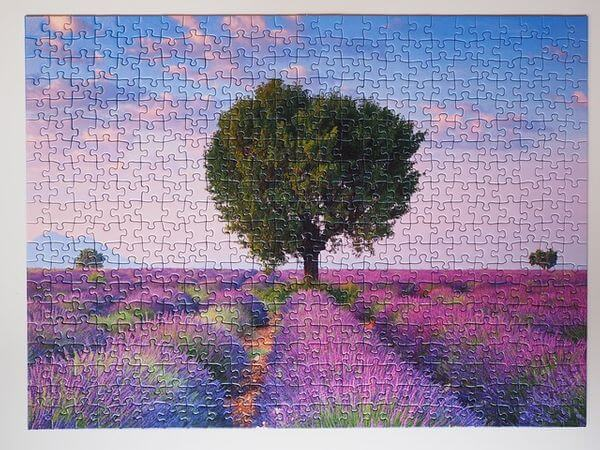 benefits from doing puzzles- completed puzzle