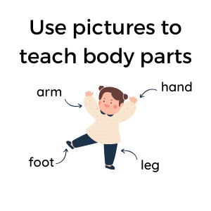 teaching kids about body parts- using pictures