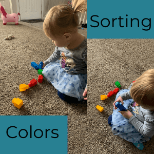Teaching colors to toddlers- sorting colors
