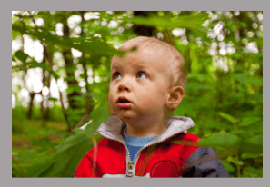 Teaching colors to toddlers- walk in nature